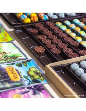 Ballotin de  chocolat Chapon 250 g