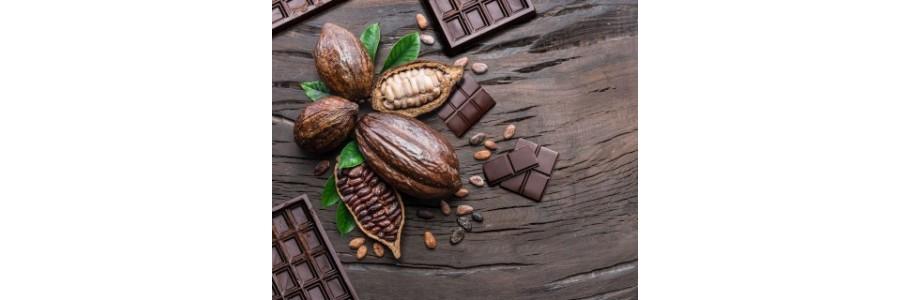 Chocolats | Le Clos Délice Coulommiers